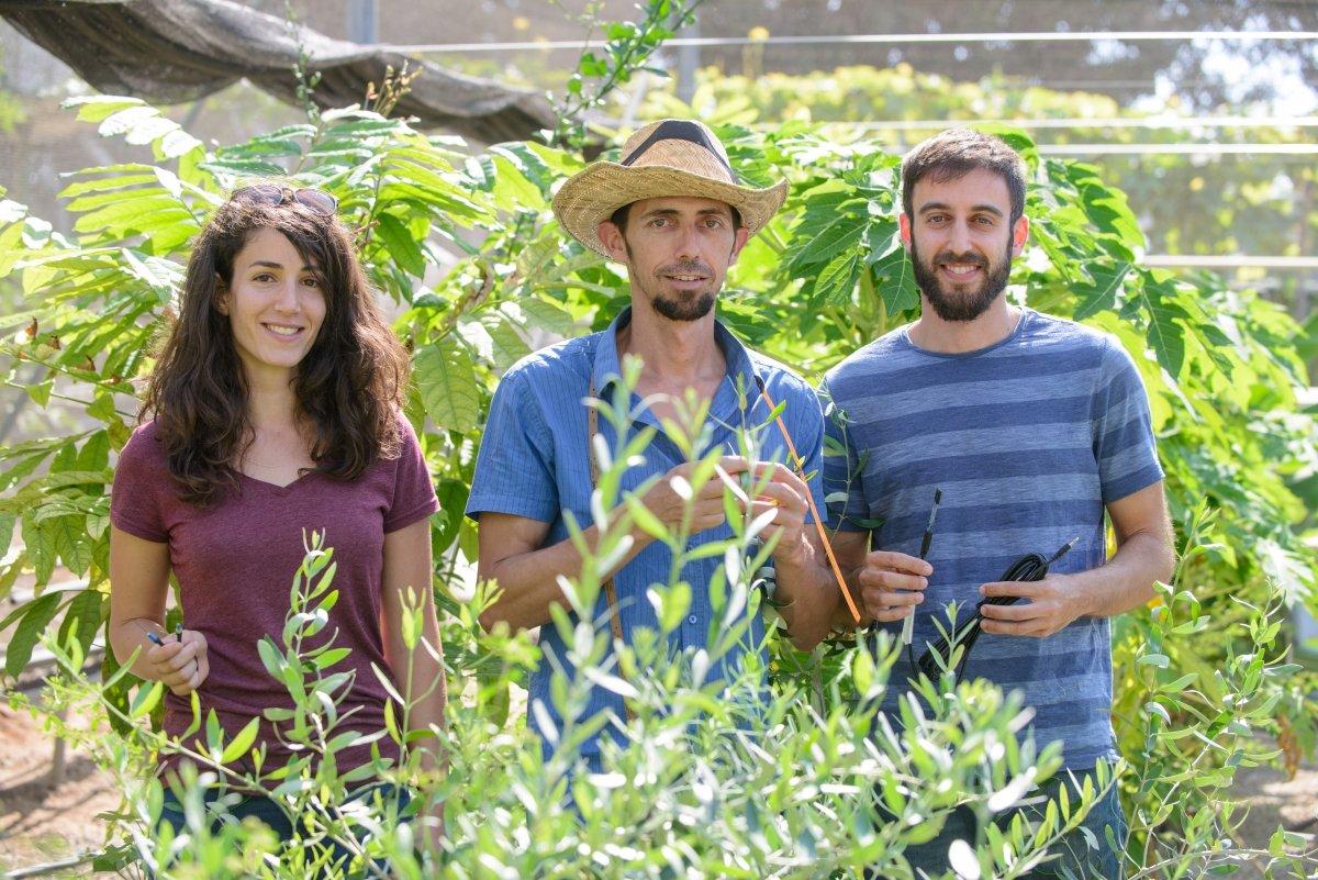 Česká společnost přátel Izraele nocamels.comTreeLab-b9b500b5df151a185177dfdb68c7fa3739965358 The Giving Tree: Israeli Researcher Discovers Trees Interact, Share Resources NoCamels.com